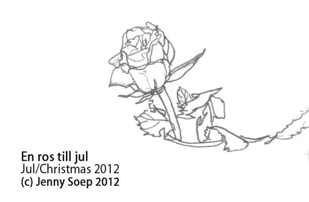 Jul 4 - Rose